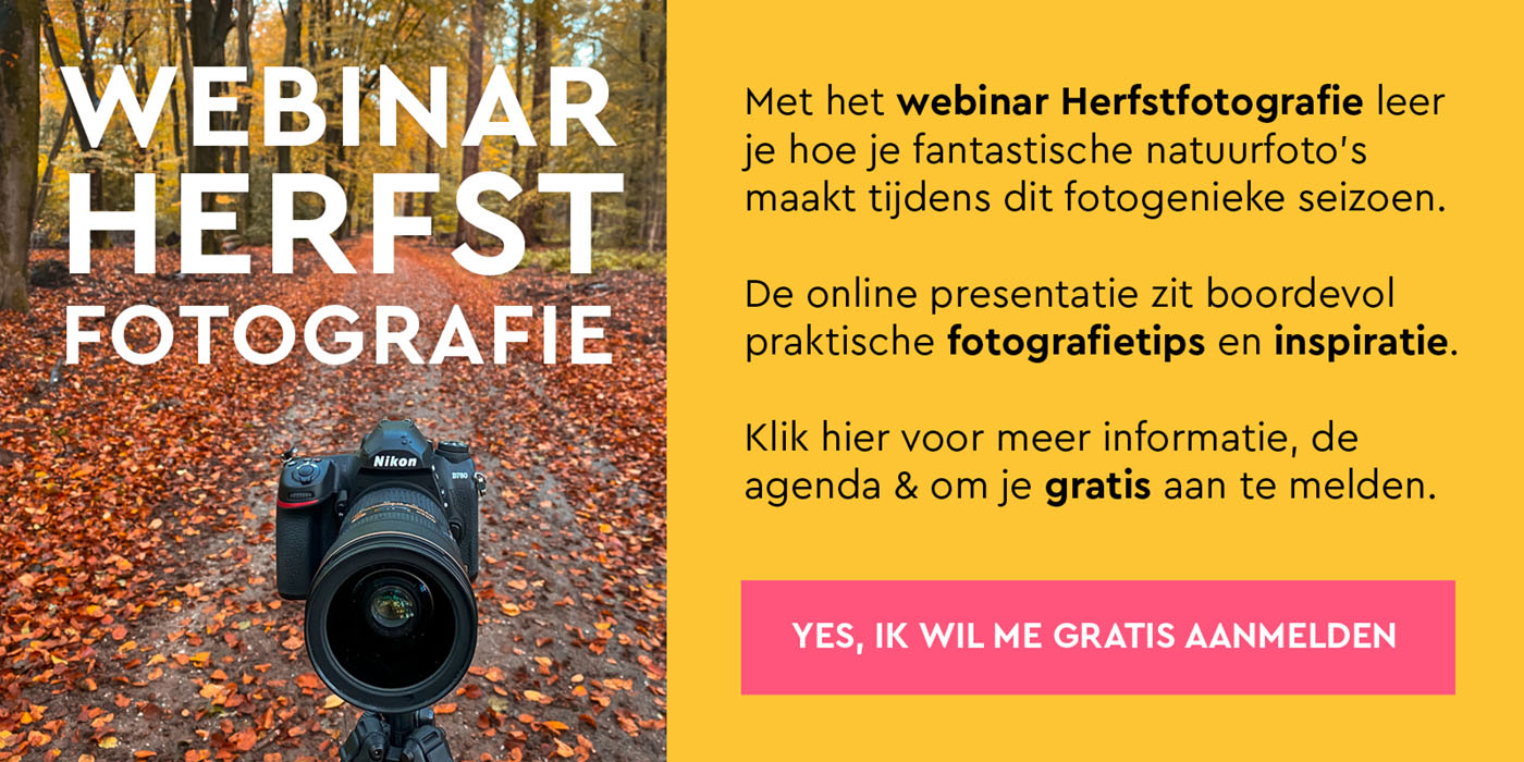 Volg het webinar herfstfotografie