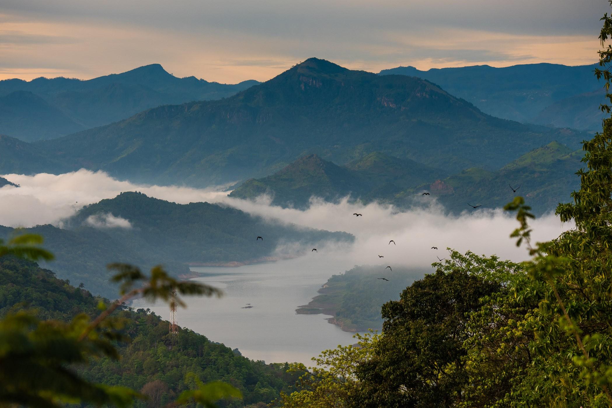 Vanaf deze bergtop in Knuckles Mountain Range in Sri Lanka hadden we een mooi uitzicht op het stuwmeer.