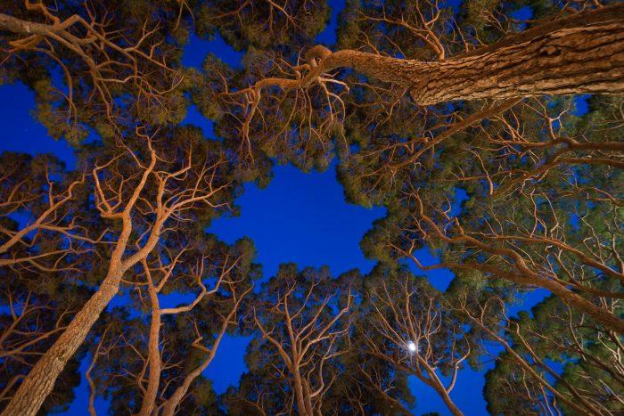 Door de lange sluitertijd wordt het blauw in de lucht versterkt.