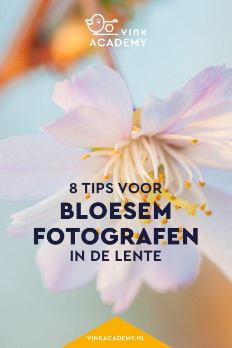 Bloesem fotograferen: 8 tips
