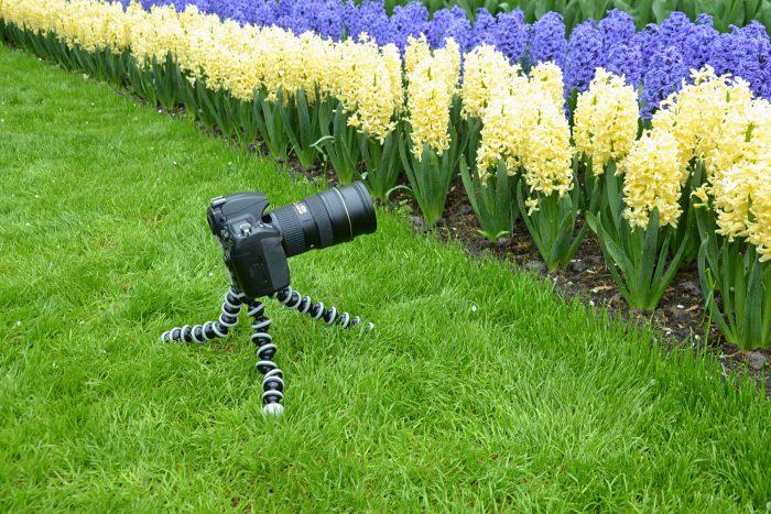Bolletjesstatief bij bloemenfoto's maken