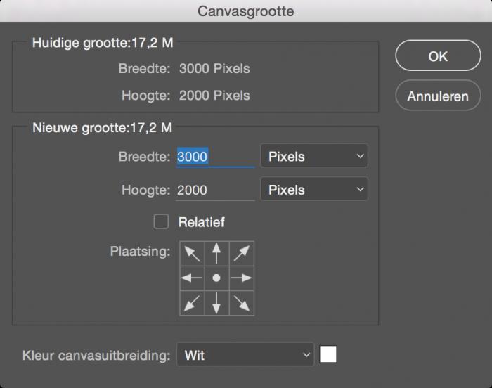 Nadat ik Pixels heb geselecteerd, zie ik het pixelformaat van de foto staan: 3000x2000pixels.