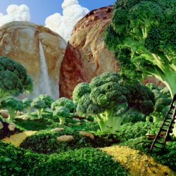 Carl Warner Foodscapes