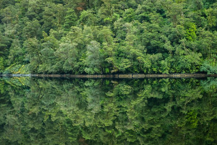 Het water in het fjord was 's ochtends spiegelglad. Zo mooi!