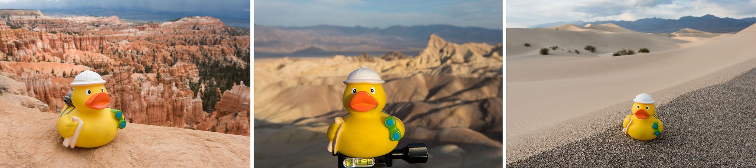 Ducky op reis - drieluik