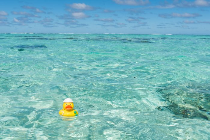 Ducky dobbert lekker in zee bij de Cookeilanden