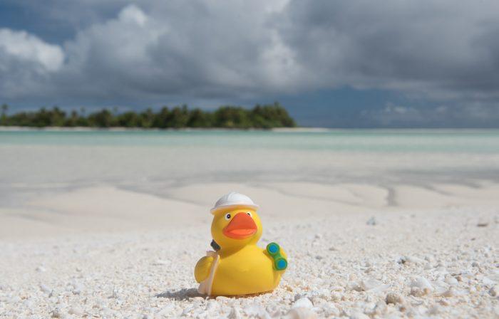 Ducky op een onbewoond eiland dat Honeymoon Island wordt genoemd.