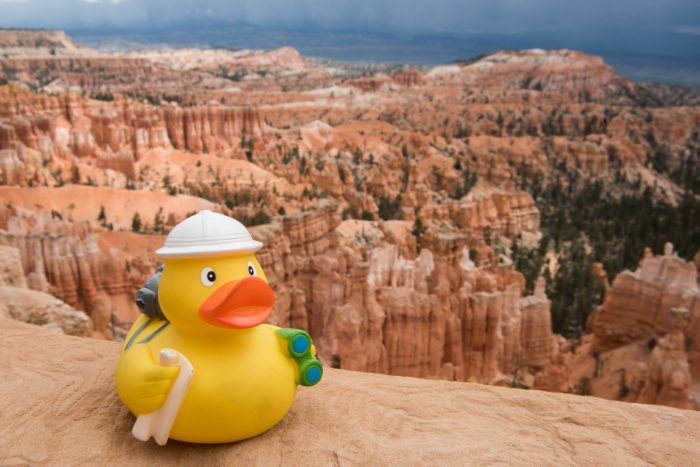Ducky bij Bryce Canyon (nog veeeel mooier dan the Grand Canyon)