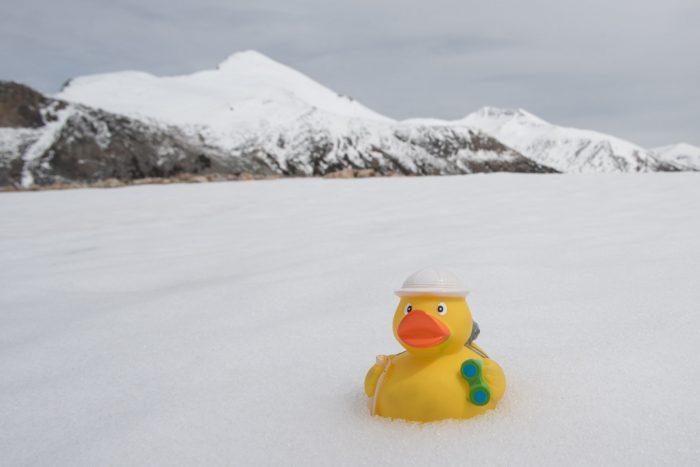 Ducky in de sneeuw bij Yosemite!