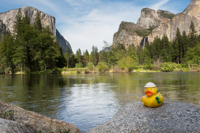 Ducky bij the vallei van Yosemite
