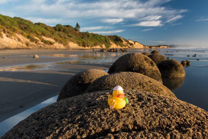 Ducky bij de Moeraki Boulders in Nieuw-Zeeland