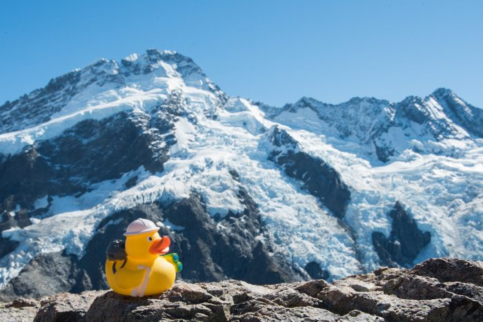 Ducky op de top van de berg met het uitzicht over de Mueller gletjser