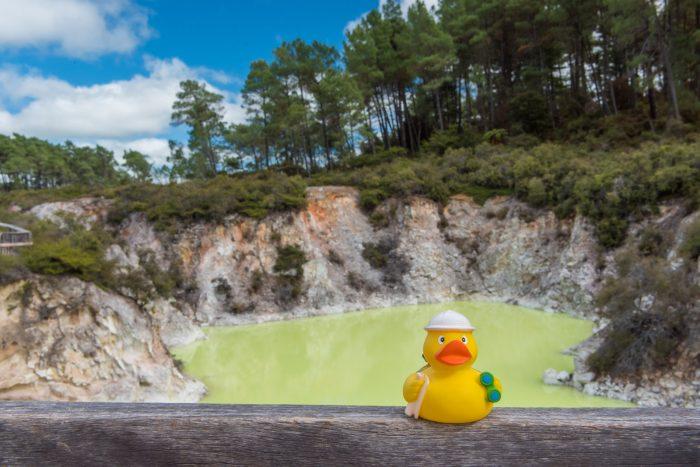 Ducky bij 'Termal Wonderland' in Rotarua, Nieuw-Zeeland. Ja, dat water was écht zo groen!