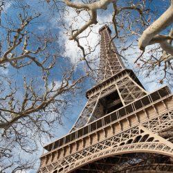 Eiffeltoren met een kader van takken