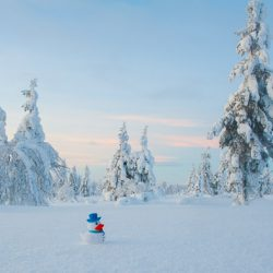 Sneeuw fotograferen