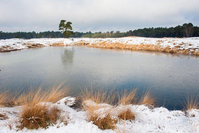 Als je goed kijkt zie je in de verte twee wandelaars. Ook zei gingen er lekker op uit toen de sneeuw er nog mooi bij lag.