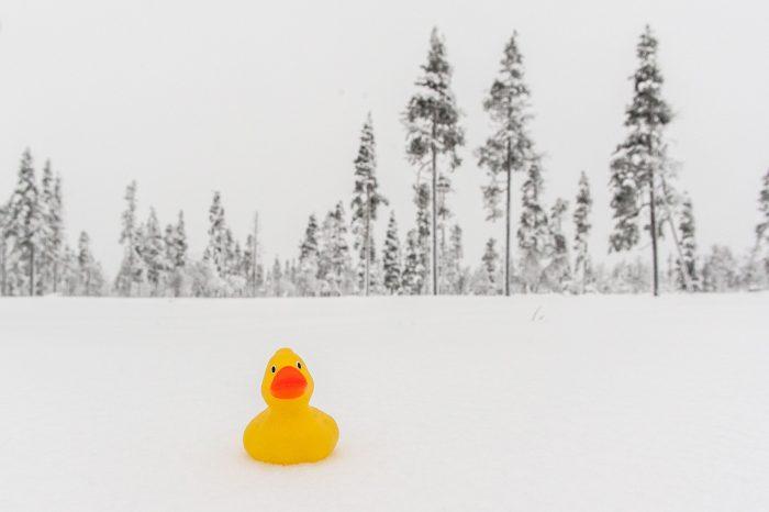 Witbalans gecorrigeerd bij sneeuwfoto