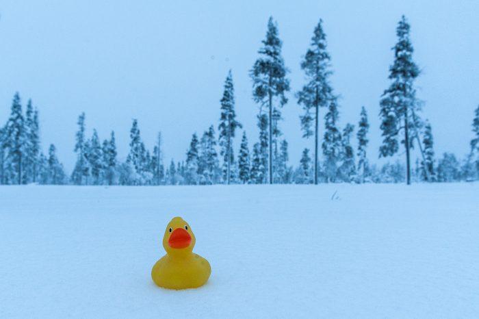 Witbalans bij sneeuwfoto's: te blauw