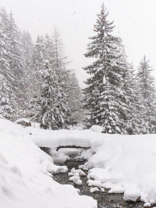 Gebruik de zonnekap bij het fotograferen in de sneeuw