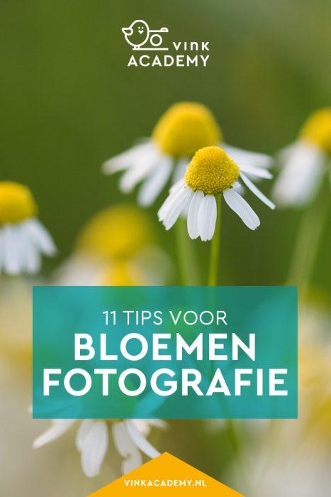 11 tips voor bloemen fotograferen