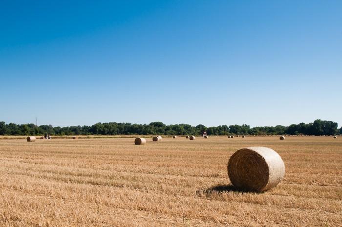 Middagzon bij landschapsfotografie Frankrijk