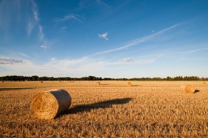 Het gouden uurtje bij landschapsfotografie geeft lange schaduwen