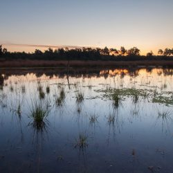 Fotografie Challenge: Hollands landschap