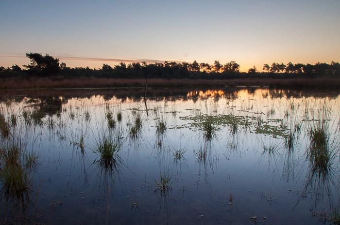 Fotografie Challenge: Hollands landschap