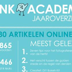 Infographic van het eerste jaar van Vink Academy
