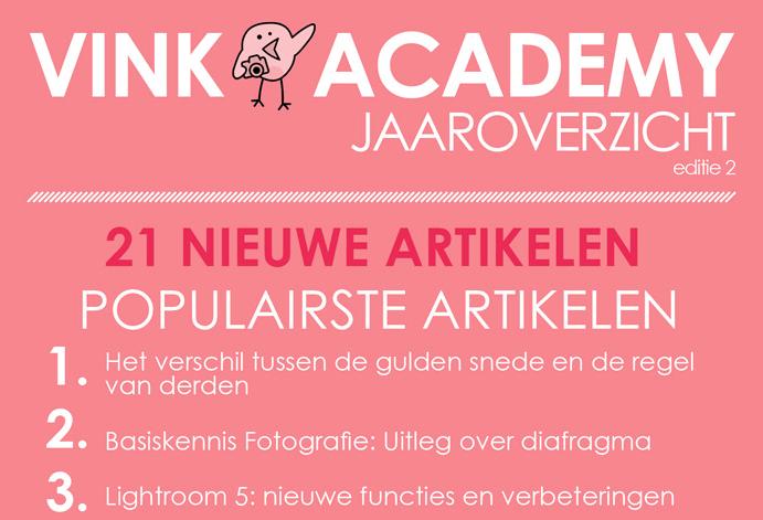 Infographic: Vink Academy bestaat 2 jaar