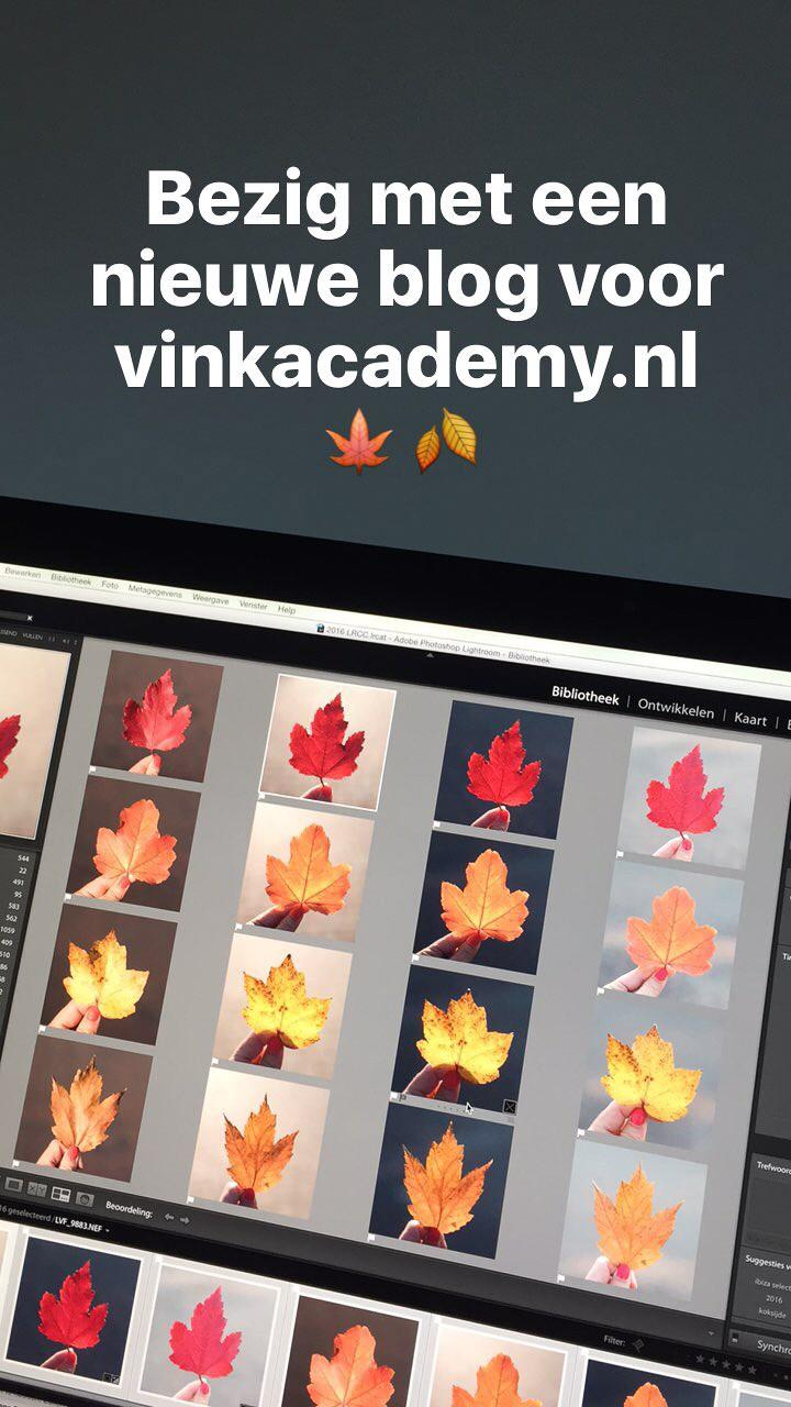 Nieuwe blog aan het schrijven voor Vink Academy