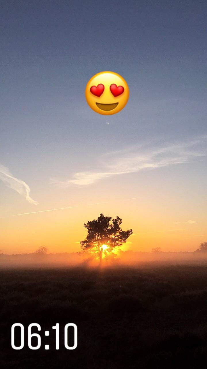 Instagram Stories: zonsopkomst bij de Loonse en Drunense Duinen