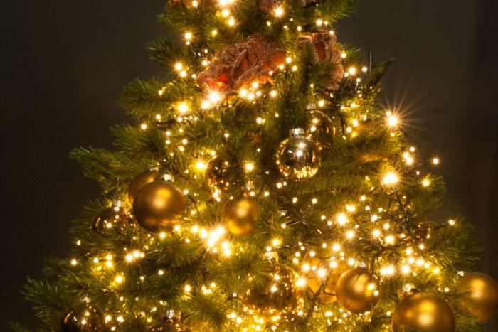 Door het diafragma te knijpen naar f/22 veranderen de kerstlichtjes in duidelijke sterretjes.