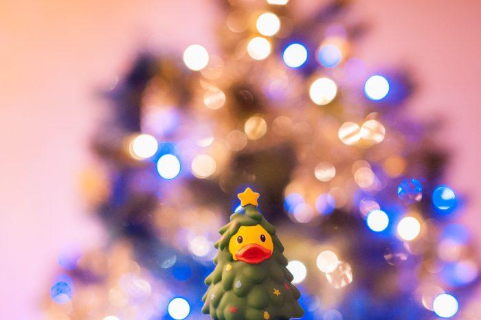 Gebruik de lichtjes van de kerstboom voor een sprankelende achtergrond. Met een kleine scherptediepte veranderen de lampjes in bokehbollen.