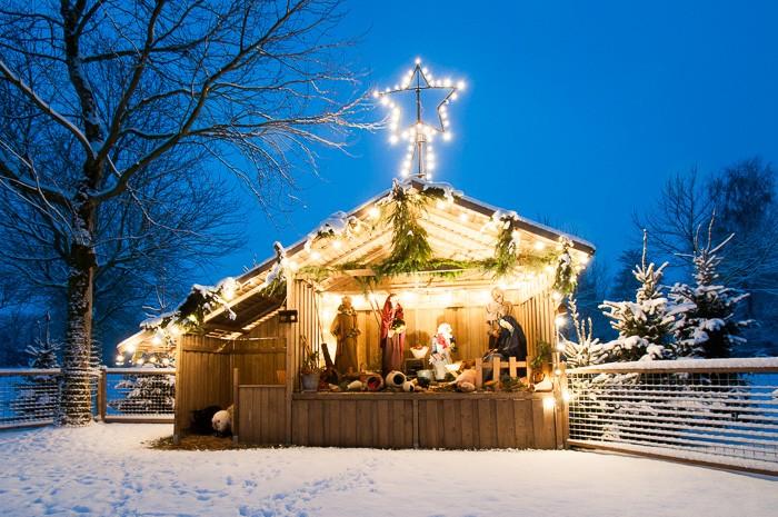 Unieke kerstkaarten maken