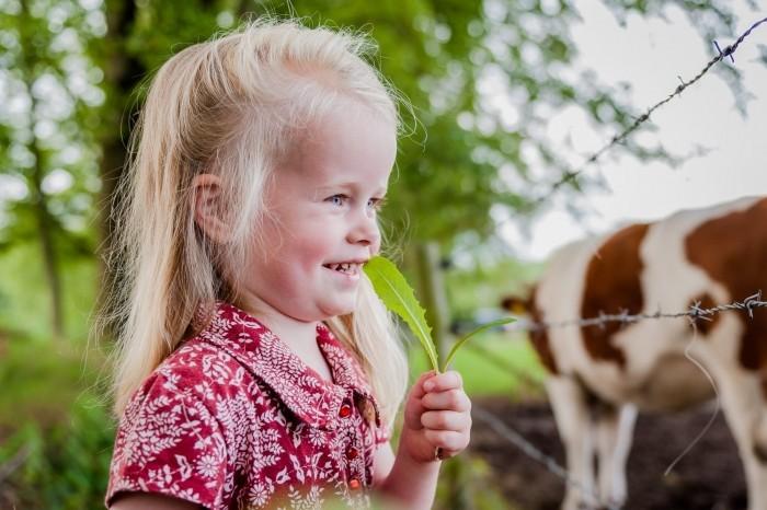 Kijkruimte: kaatje kijkt naar de koeien