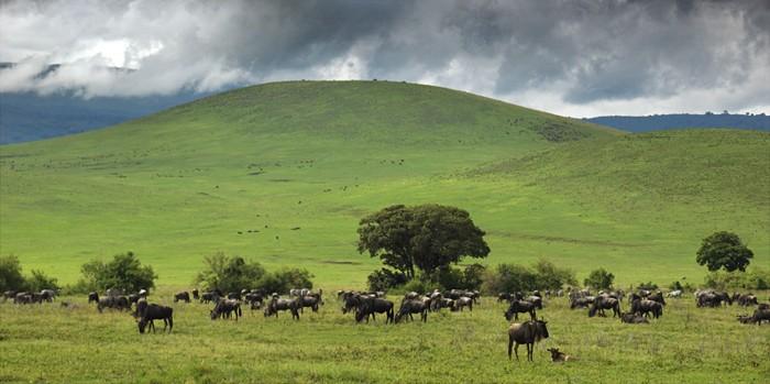 Duidelijke wolken bij de Ngorogoro krater in Tanzani
