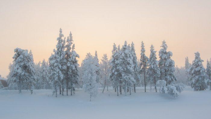 Lapland is zó mooi!