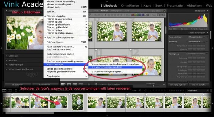 Selecteer de foto's waarvan je de voorvertoning wilt renderen