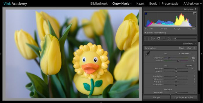 Voor deze foto heb ik in het menu onder 'Als opname' gekozen voor automatisch. In dit voorbeeld vind ik de foto te blauw geworden.