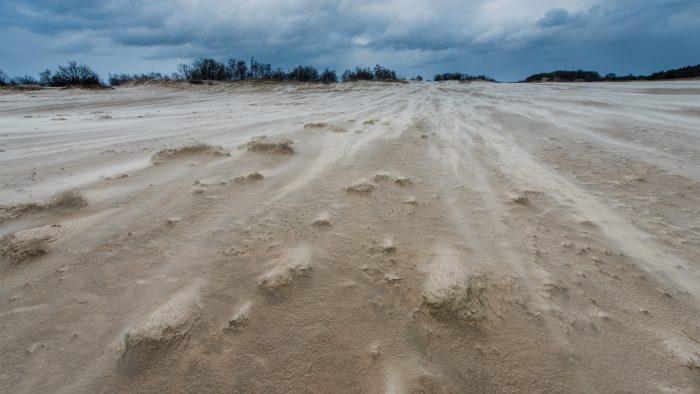 Een van de tofste momenten op de Loonse en Drunense Duinen: fotograferen tijdens een (zand)storm! :)