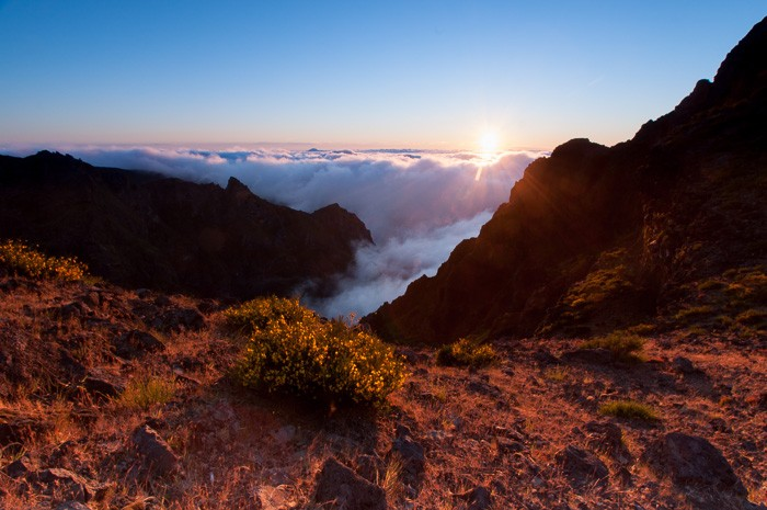 Bronzen minuut net na zonsopkomst in Madeira