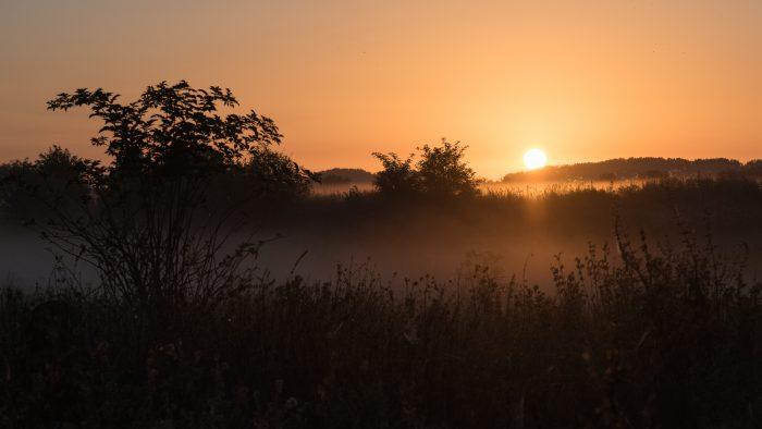 Zodra de zon boven de horizon komt, is de mist vaak snel verdwenen