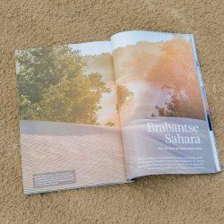 Mijn fotoserie over de Brabantse Sahara in National Geographic, gefotorafeerd op bij Loonse en Drunense Duinen. :)