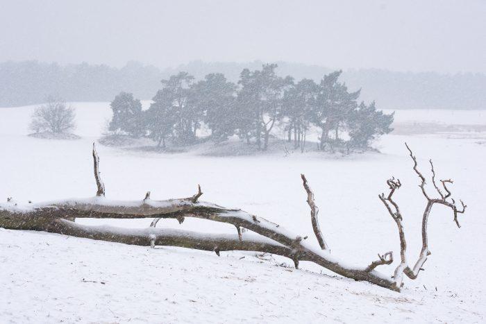 Dehaze bij sneeuwfoto's