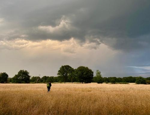 Fotografiechallenge juli: wolkenluchten