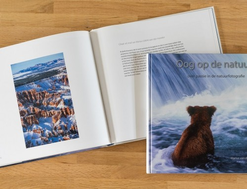 Meld je aan voor de Marius van der Sandt Academy beurs voor jonge talentvolle natuurfotografen