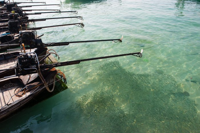De reflectie van de lucht voorkomt dat je goed naar de vissen kan kijken. Het polarisatiefilter vermindert deze reflectie. Wat een verschil he?