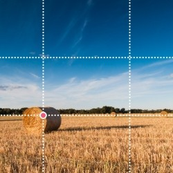 Hooi balen in Frankrijk gefotografeerd volgens de regel van derden