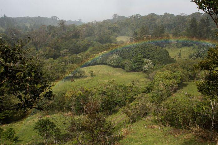 In de regen een regenboog fotograferen